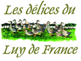 Delices luy france